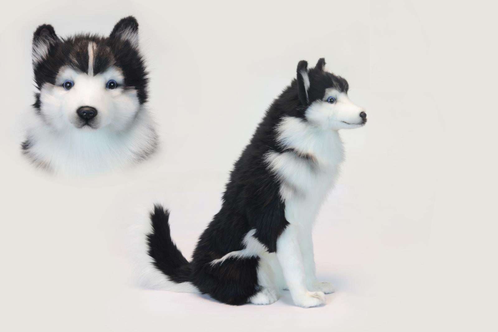 Мягкая игрушка - Хаски сидящая, 37 см.Собаки<br>Мягкая игрушка - Хаски сидящая, 37 см.<br>