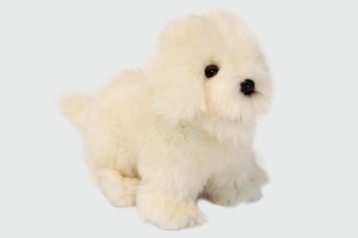 Мягкая игрушка – Собака породы Бишон Фризе, 30 см.