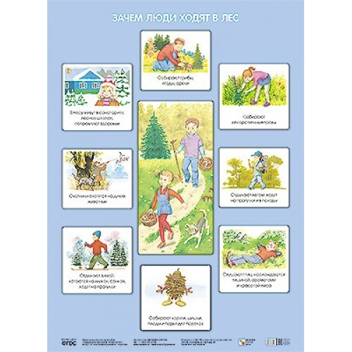 Плакат Николаева С. Н. - Зачем люди ходят в лесРазвивающие пособия и умные карточки<br>Плакат Николаева С. Н. - Зачем люди ходят в лес<br>