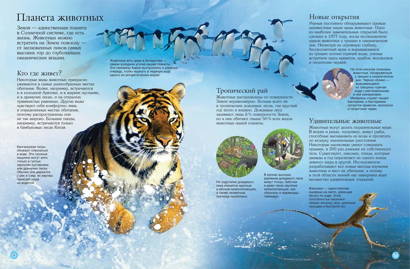 Расширять новые открытия в мире животных того как системе