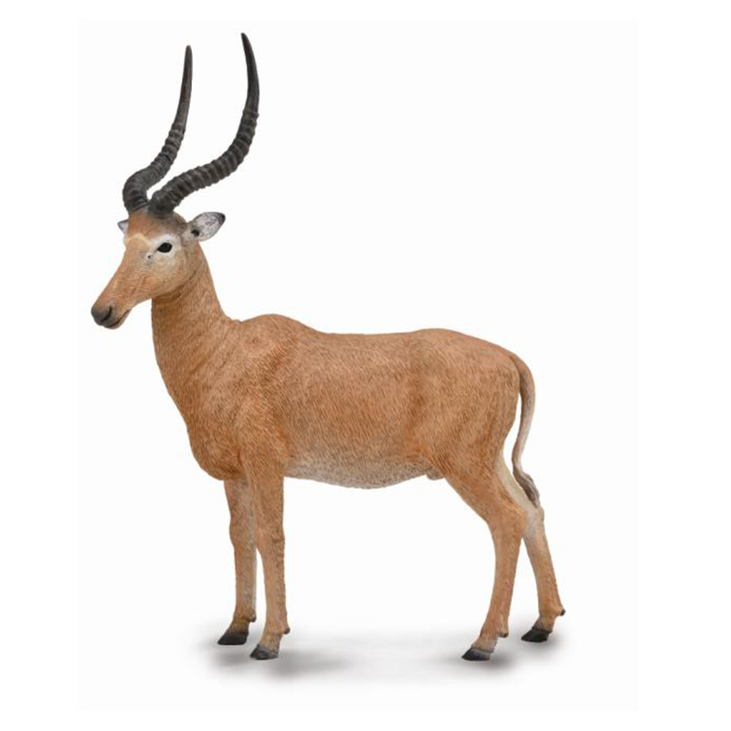 Бубал Хантера , LДикая природа (Wildlife)<br>Бубал Хантера , L<br>