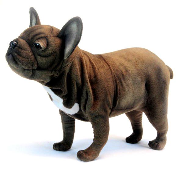 Мягкая игрушка - Французский бульдог, стоящий, 26 см.