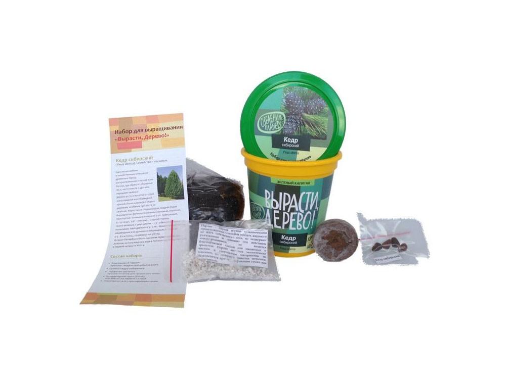 Набор для выращивания растений - Кедр сибирскийНаборы для выращивания растений<br>Набор для выращивания растений - Кедр сибирский<br>