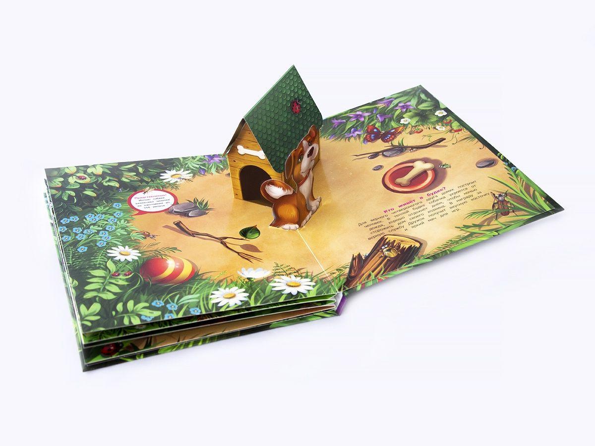 Книга с раскладывающимися картинками