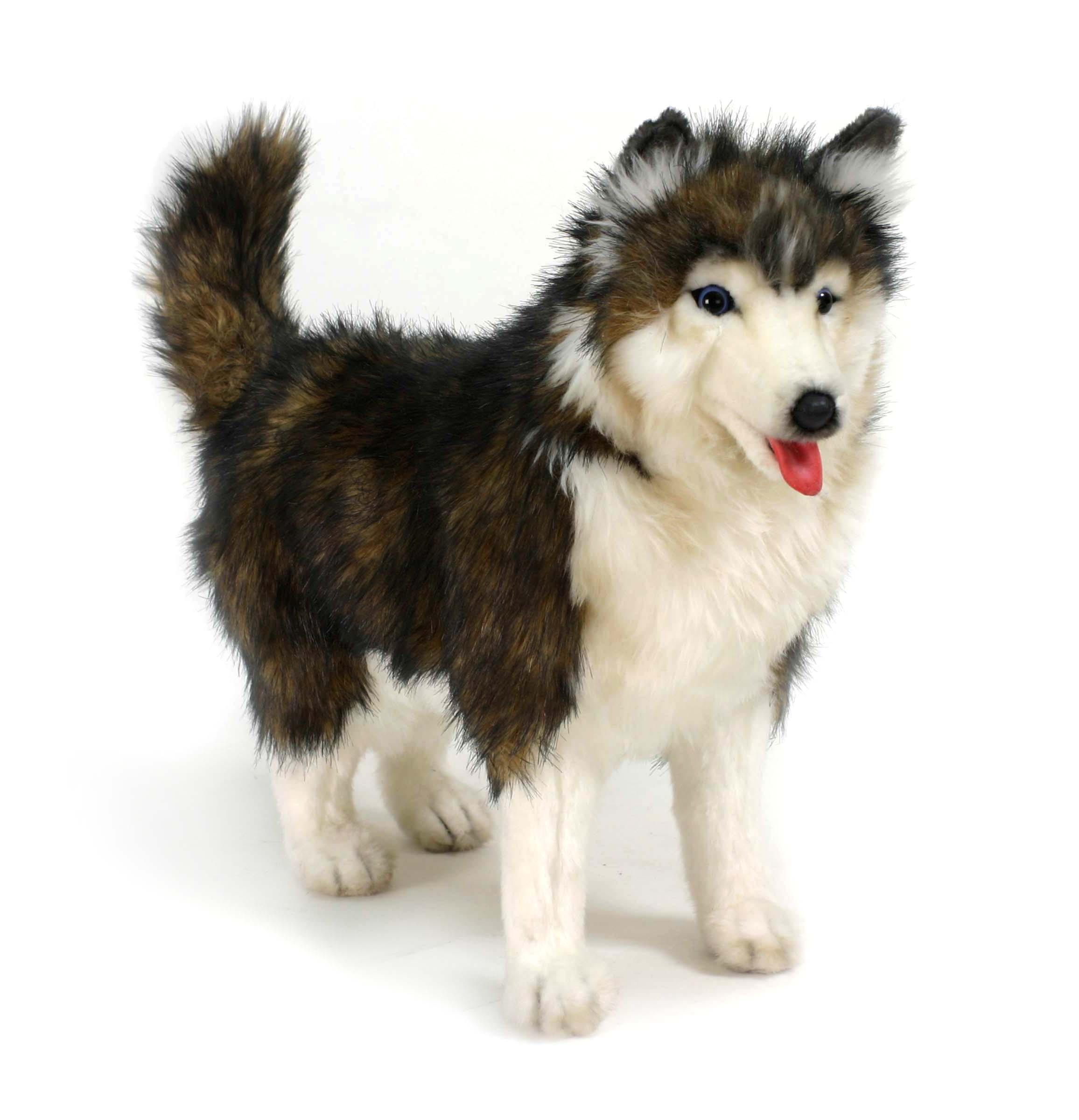 Купить Мягкая игрушка – Собака породы Сибирский Хаски, 40 см, Hansa