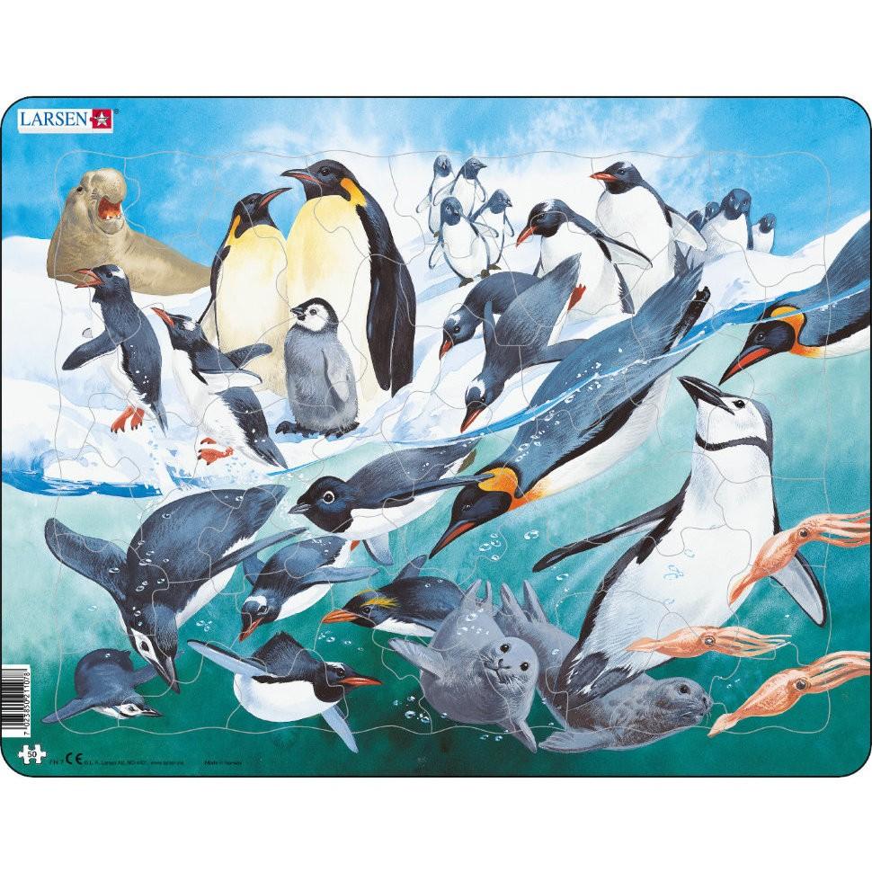 Пазл – Пингвины, 50 элементов от Toyway