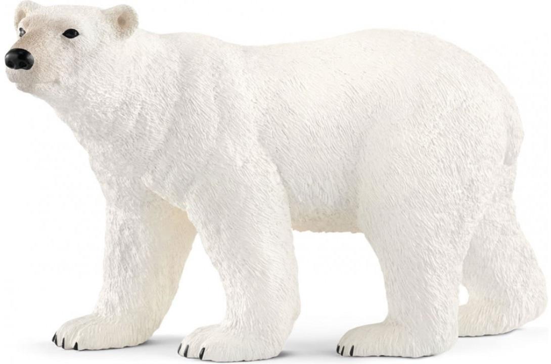 Картинки для детей медведица, днем