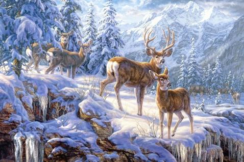 Пазл Зимние горы, 1000 элементовПазлы 1000 элементов<br><br>