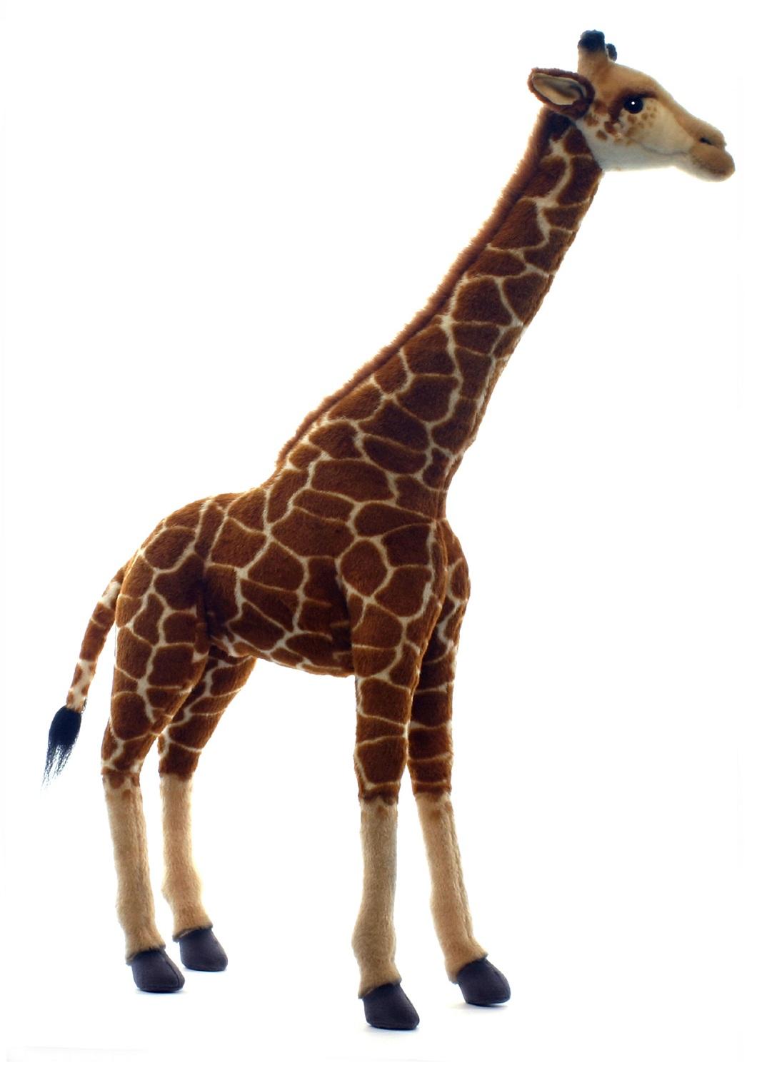 Мягкая игрушка – Жираф, 70 см фото