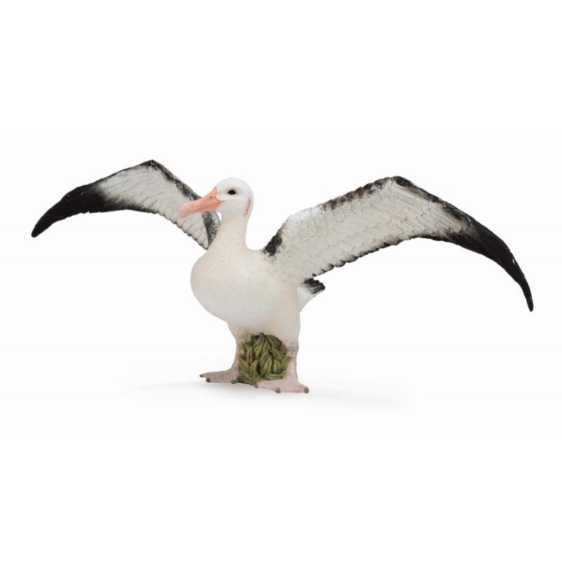 Купить Фигурка животного - Странствующий альбатрос, размер L, Collecta Gulliver