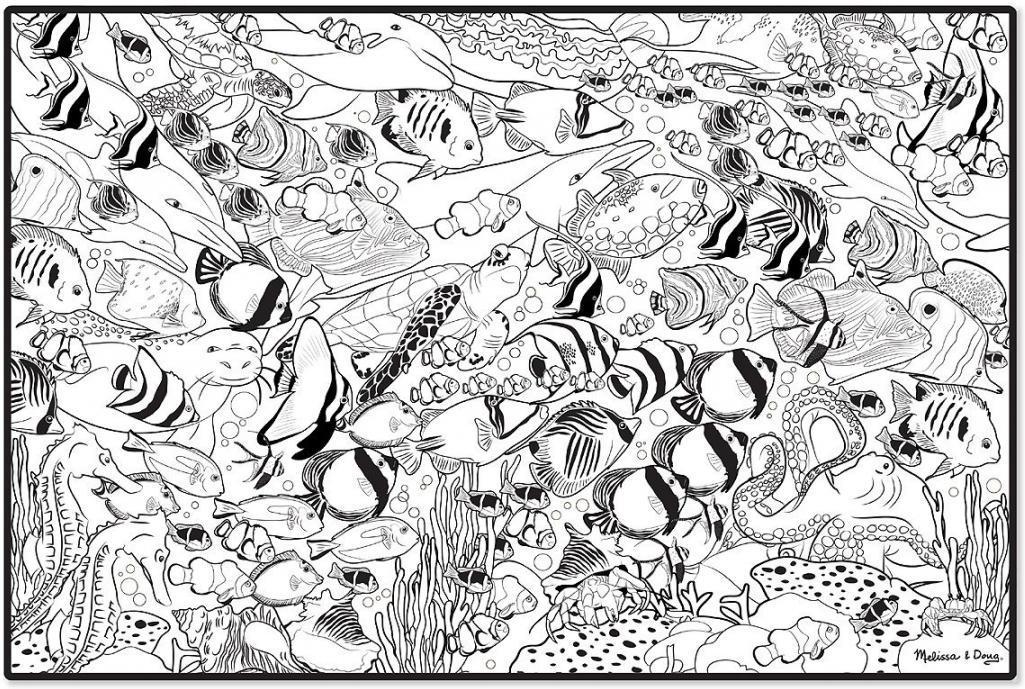 Картинка для раскраски муха