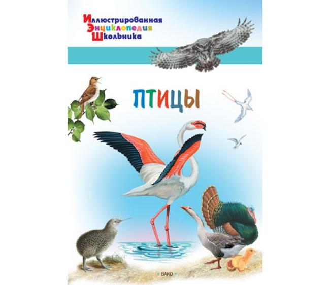 картинка Иллюстрированная энциклопедия школьника – Птицы от магазина Bebikam.ru