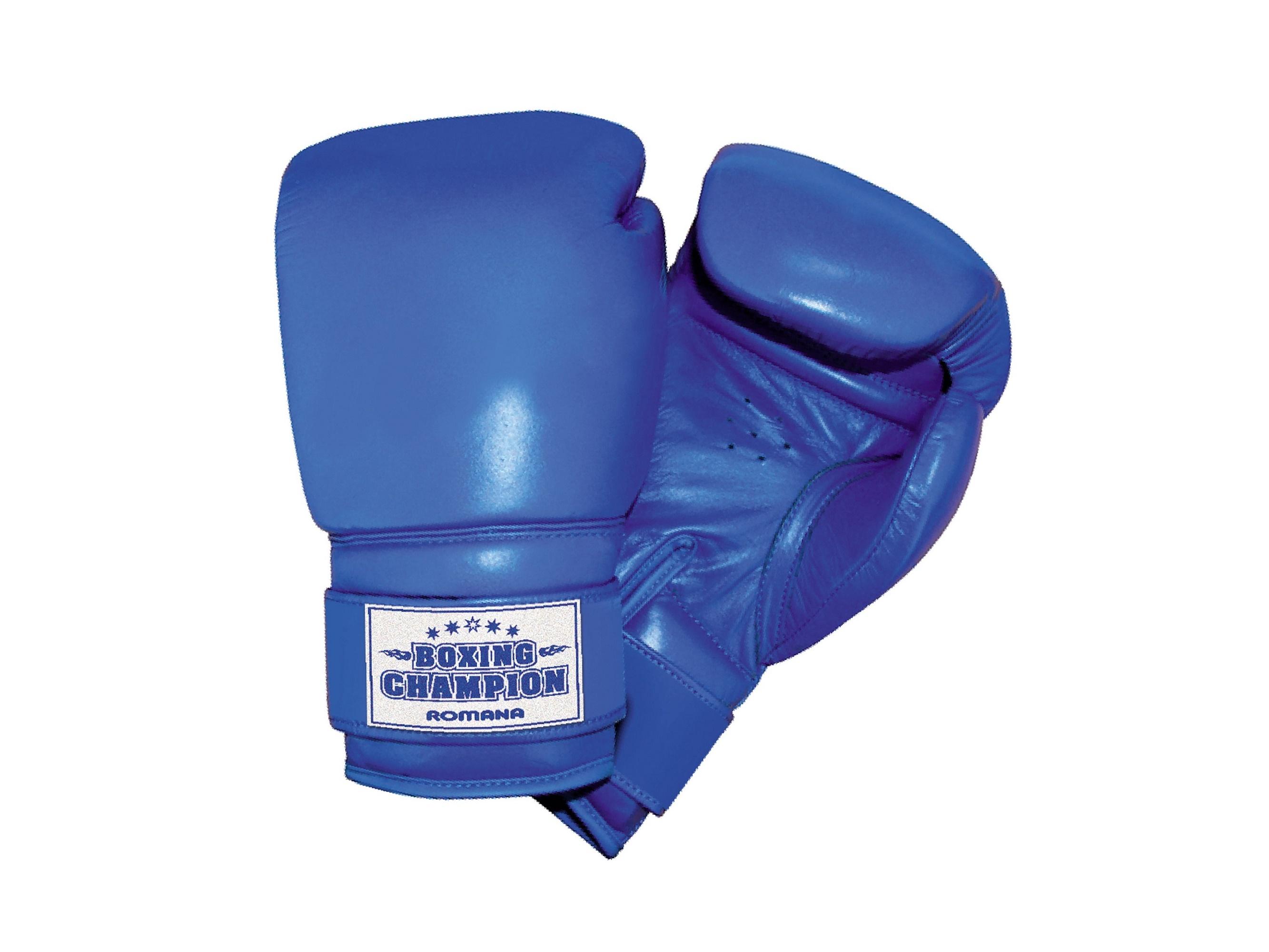 Купить Перчатки боксерские Romana для детей 10-12 лет, 8 унций ДМФ-МК-01.70.05, Romana (Романа)