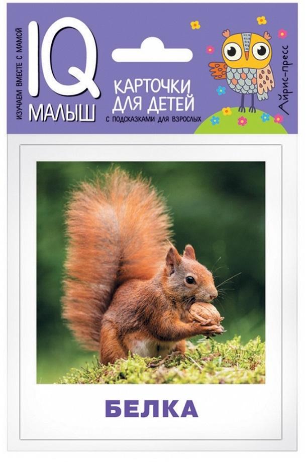 Карточки из серии Умный малыш - Кто живёт в лесу?Развивающие пособия и умные карточки<br>Карточки из серии Умный малыш - Кто живёт в лесу?<br>