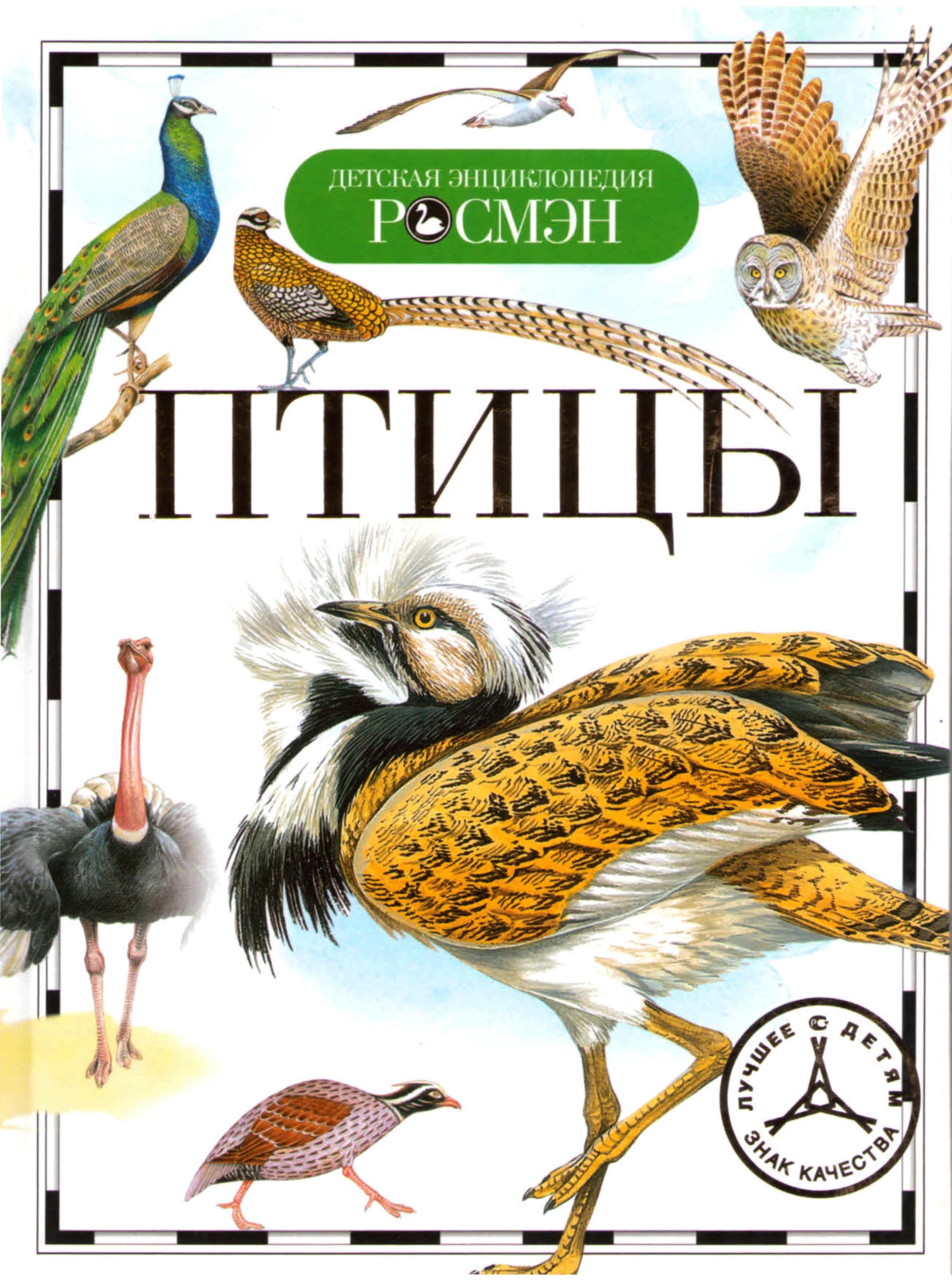 Энциклопедия «Птицы»Для детей старшего возраста<br>Энциклопедия «Птицы»<br>
