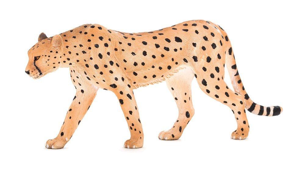 ГепардДикая природа (Wildlife)<br>Гепард<br>