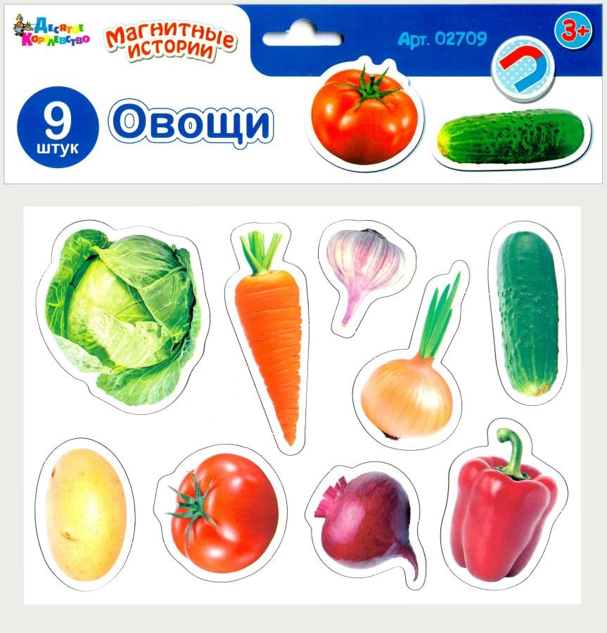 Игра магнитная развивающая - Магнитные истории Овощи фото