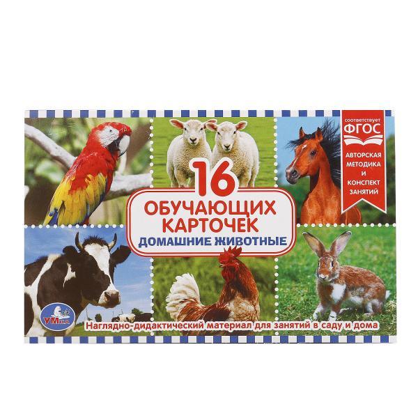 Карточки в папке - Домашние животные, 16 карточекРазвивающие пособия и умные карточки<br>Карточки в папке - Домашние животные, 16 карточек<br>