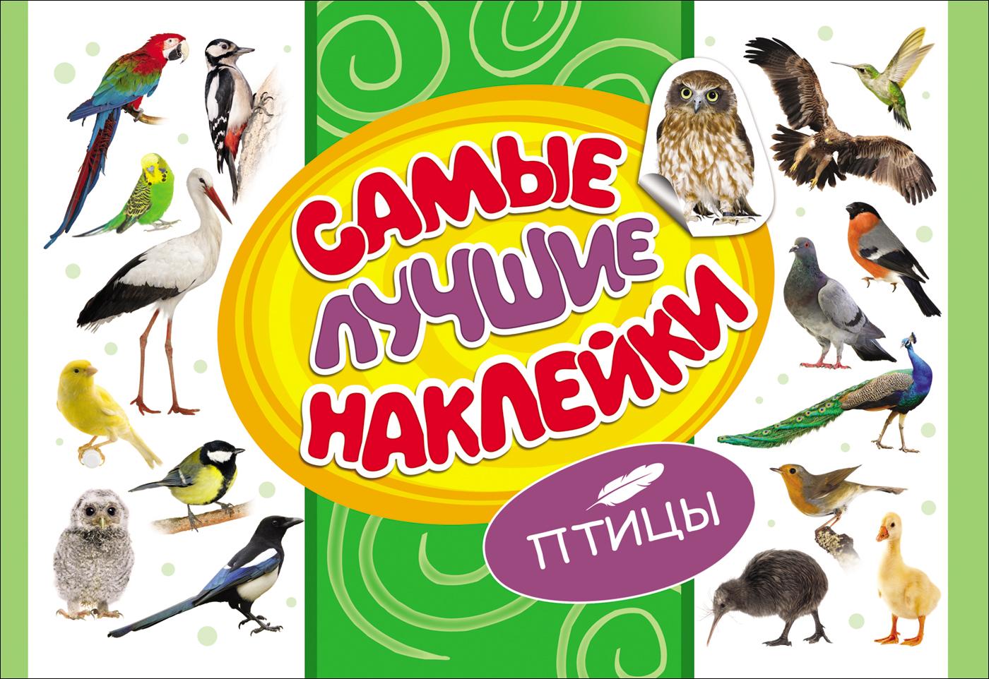 картинка Самые лучшие наклейки. Птицы от магазина Bebikam.ru