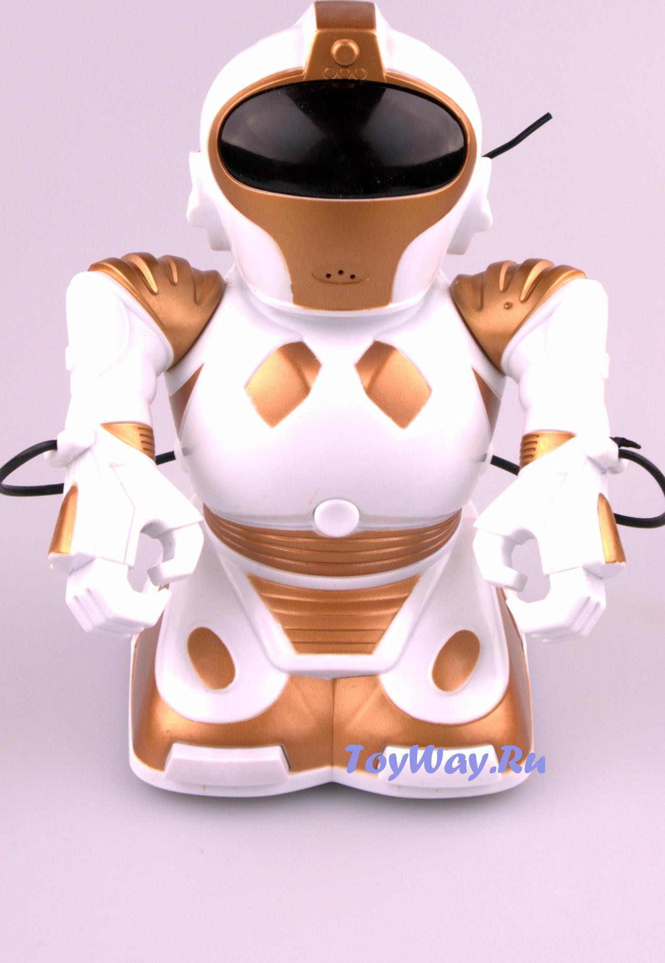 Робот на радиоуправлении 22 см., свет, звук, запись голосаРоботы на радиоуправлении<br>Робот на радиоуправлении 22 см., свет, звук, запись голоса<br>
