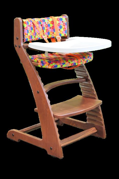 Купить Растущий стул Praktikk, цвет - Светлый орех + комплект для кормления, Wood lines