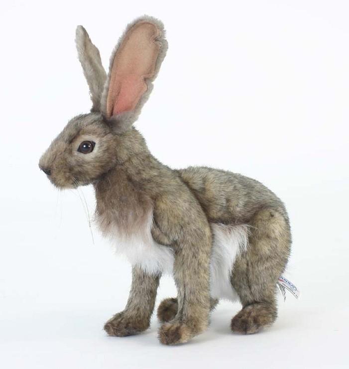 Мягкая игрушка – Заяц, 30 см