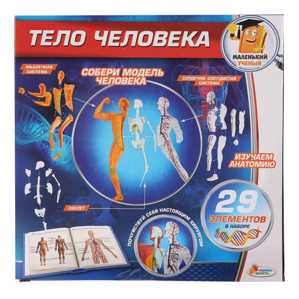 Купить со скидкой Игровой набор – Опыты: тело человека, 29 деталей