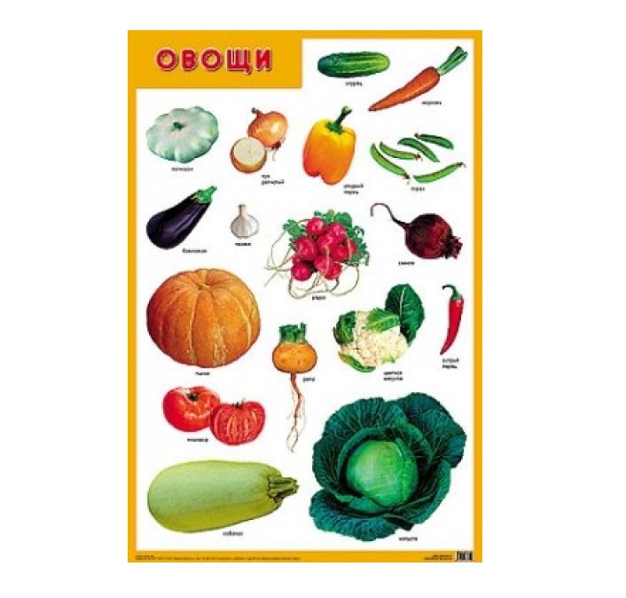Плакат - ОвощиРазвивающие пособия и умные карточки<br>Плакат - Овощи<br>