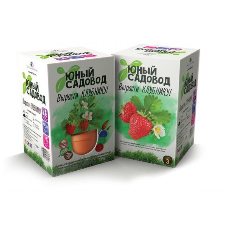 Набор для экспериментов - Юный садовод - Вырасти клубникуНаборы для выращивания растений<br>Набор для экспериментов - Юный садовод - Вырасти клубнику<br>