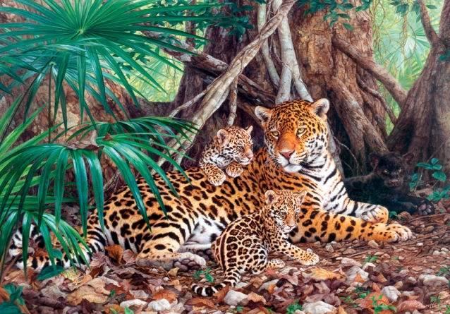 Пазл Castorland 3000 деталей Ягуары в джунгляхПазлы<br>Пазл Castorland 3000 деталей Ягуары в джунглях<br>