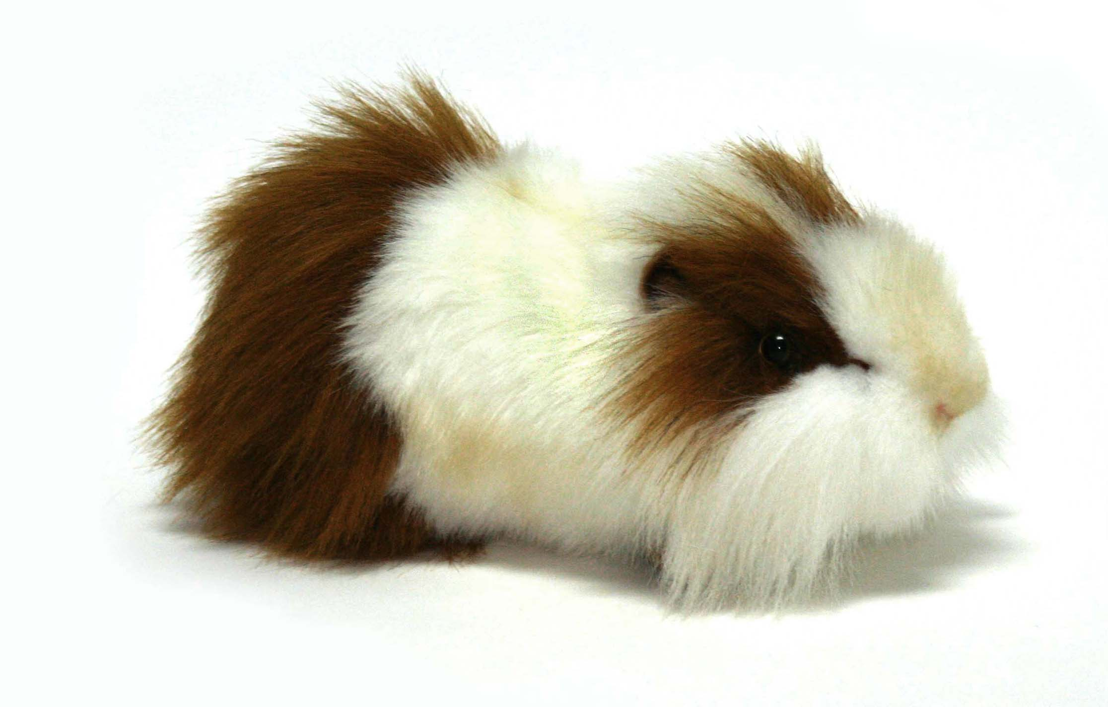 Мягкая игрушка – Морская свинка, бело-рыжая, 24 смЖивотные<br>Мягкая игрушка – Морская свинка, бело-рыжая, 24 см<br>