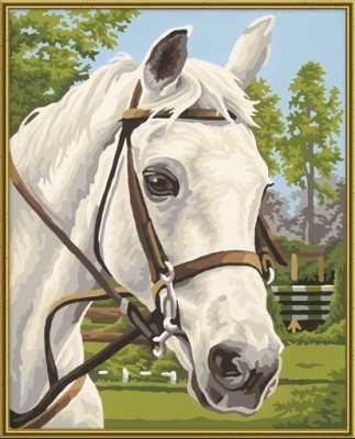 Белая лошадь, 24*30 смРаскраски по номерам Schipper<br>Белая лошадь<br>Размер готовой работы: 24 х 30 см.<br>