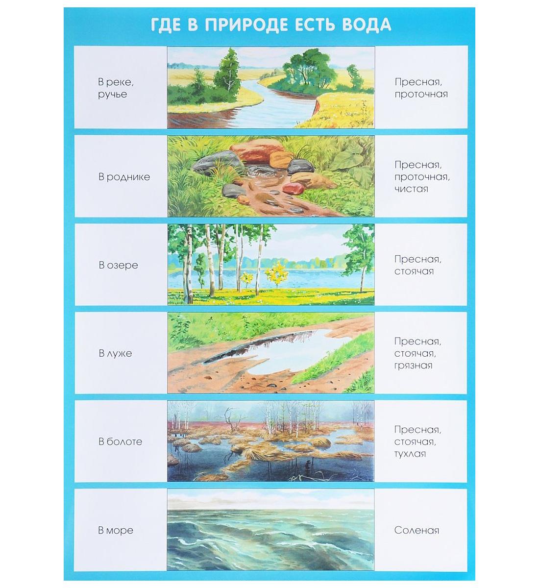 Плакат Николаева С. Н. - Где в природе есть водаРазвивающие пособия и умные карточки<br>Плакат Николаева С. Н. - Где в природе есть вода<br>