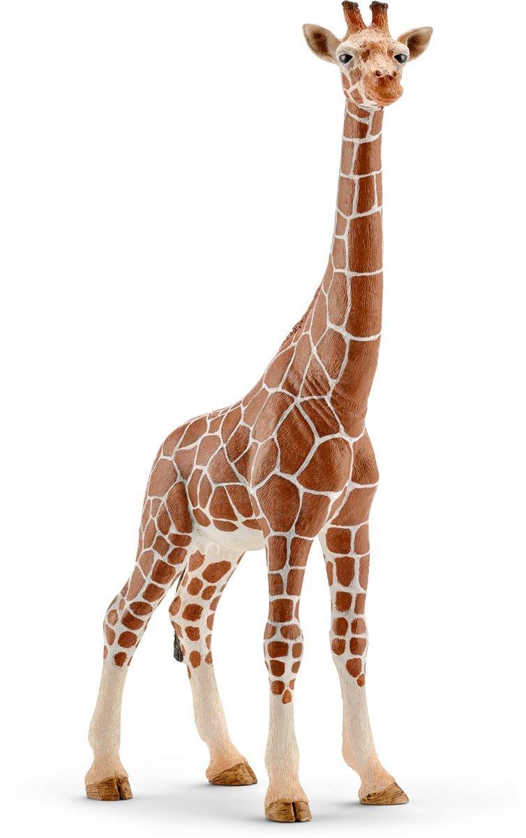 Купить Фигурка – Самка жирафа, 17, 2 см, Schleich