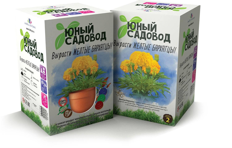 Набор для экспериментов Юный садовод - Вырасти желтые бархатцыНаборы для выращивания растений<br>Набор для экспериментов Юный садовод - Вырасти желтые бархатцы<br>