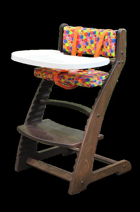 Купить Растущий стул Praktikk, цвет - Тёмный орех + комплект для кормления, Wood lines