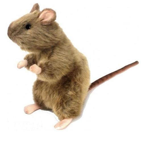 Крыса, 25 смЖивотные<br>Крыса, 25 см<br>