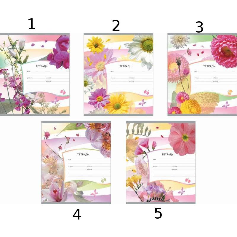 Тетрадь ученическая «Цвет лета», 18 листов, клеткаТетради<br>Тетрадь ученическая «Цвет лета», 18 листов, клетка<br>