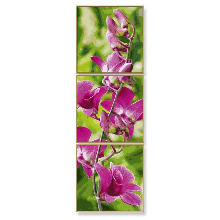 Раскраска по номерам – триптих - Орхидеи, 120 х 40 смРаскраски по номерам Schipper<br>Раскраска по номерам – триптих - Орхидеи, 120 х 40 см<br>