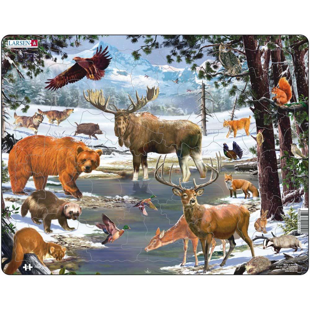Пазл – Животные Северной Европы, 54 деталиПазлы до 100 элементов<br>Пазл – Животные Северной Европы, 54 детали<br>