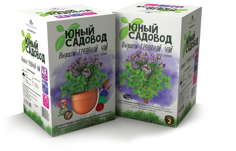 Набор для экспериментов Юный садовод - Вырасти травяной чайНаборы для выращивания растений<br>Набор для экспериментов Юный садовод - Вырасти травяной чай<br>