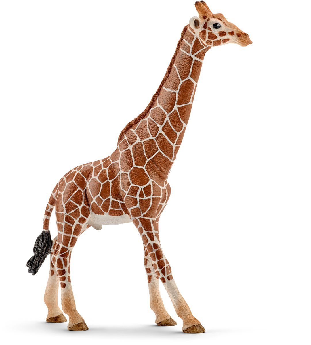 Купить Фигурка – Самец жирафа, 17 см, Schleich