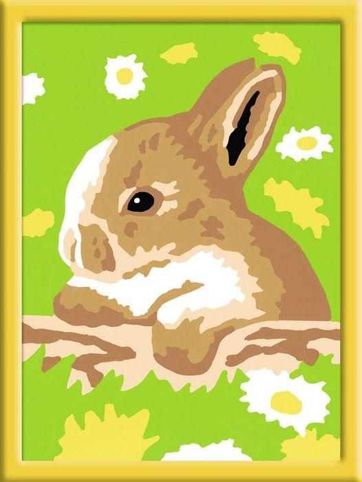 Раскрашивание по номерам – Кролик в ромашкахРаскраски по номерам Schipper<br>Раскрашивание по номерам – Кролик в ромашках<br>