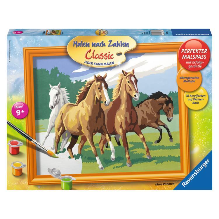 Раскрашивание по номерам Дикие лошадиРаскраски по номерам Schipper<br>Раскрашивание по номерам Дикие лошади<br>