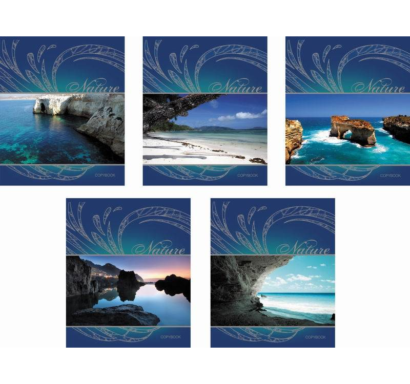 Купить Тетрадь ученическая в клетку 48 листов - Blue Lagoon, Полиграфика