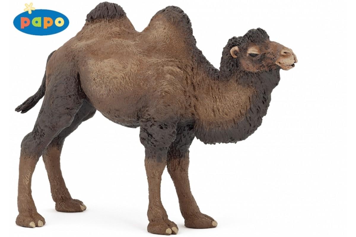 ВерблюдДикая природа (Wildlife)<br>Верблюд<br>