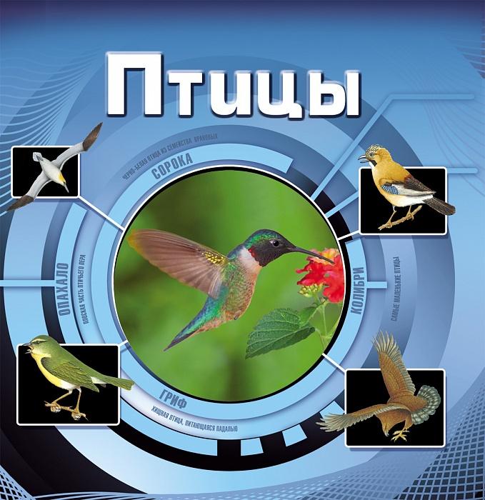 картинка Детская энциклопедия «Птицы» от магазина Bebikam.ru