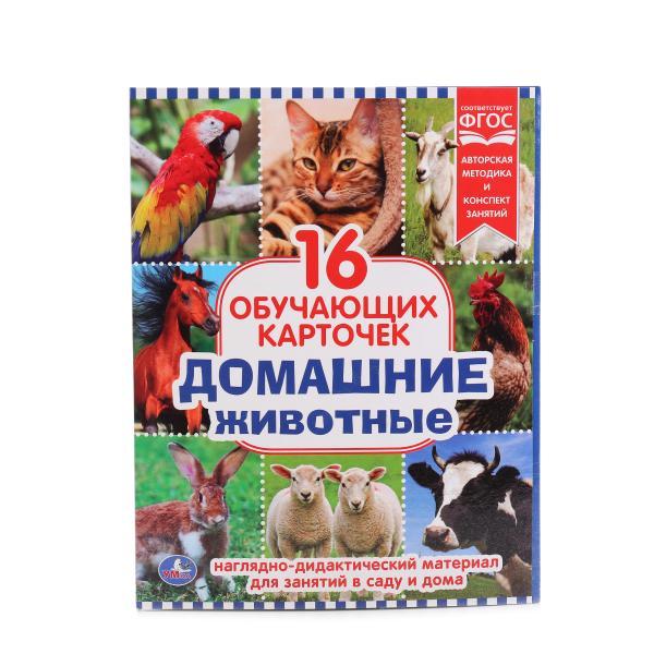 Обучающие карточки в папке - Домашние животные, 16 шт.Животные и окружающий мир<br>Обучающие карточки в папке - Домашние животные, 16 шт.<br>