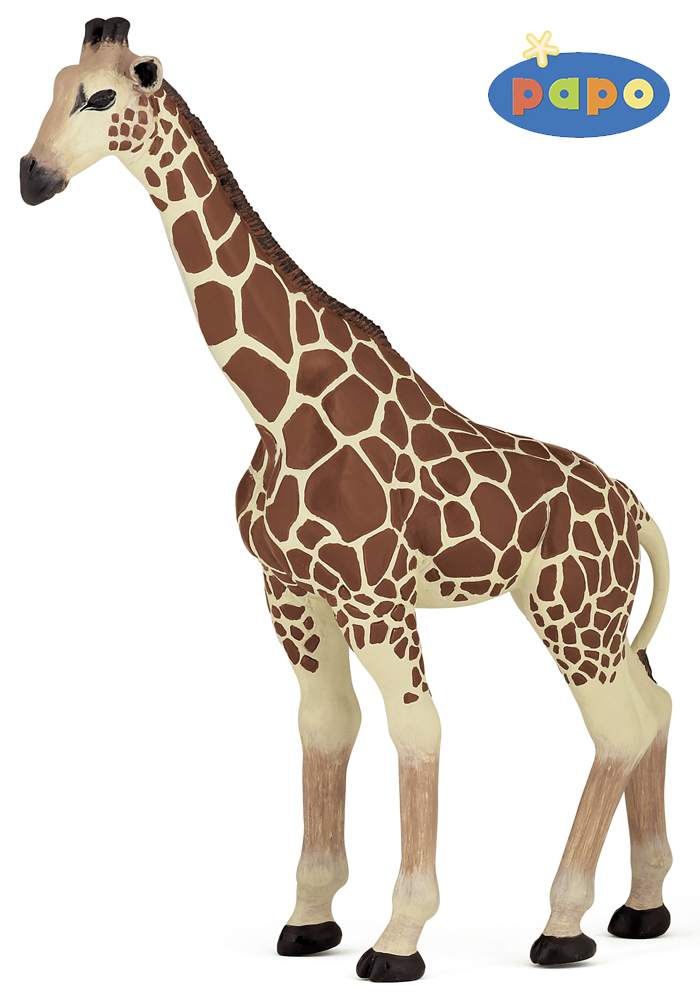 ЖирафДикая природа (Wildlife)<br>Жираф<br>