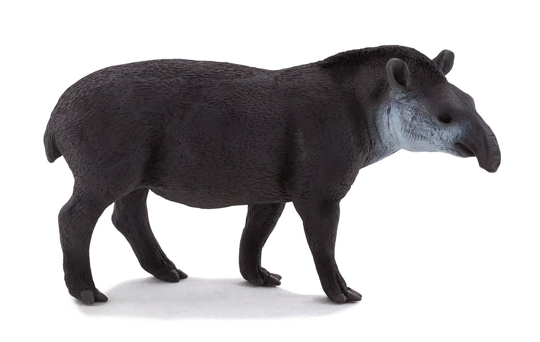 Бразильский тапирДикая природа (Wildlife)<br>Бразильский тапир<br>